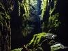 In der Lost World Cave, Waitomo, Nordinsel, Neuseeland