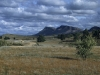 Wilpena Pound in den Flinders Ranges, South Australia, Australien