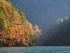 Farbenfroher Herbstwald am Ufer des Königssee, Nationalpark Berchtesgaden, Bayern, Deutschland