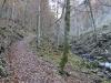 Vor der Schrainbachalm, Nationalpark Berchtesgaden, Bayern, Deutschland