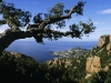 Auf dem Wanderweg oberhalb der Cote d\'Or im Estérel-Massif, Cote d\'Azur, Frankreich