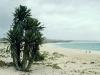 Am Strand von Praia de Chave, Boavista, Kapverdische Inseln