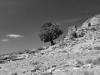 Runien eines Nuraghen am Pass Genna e Medau, Ogliastra, Sardinien, Italien