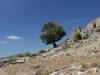 Die Ruinen eines Nuraghen am Pass Genna e Medau im Hinterland von Ostsardinien