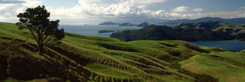 Sanfte Hügel, einladenden Strände, das Meer oder die Berge der Pinnacles machen die Coromandel Halbinsel zu einem Reiseparadies innerhalb Neuseelands