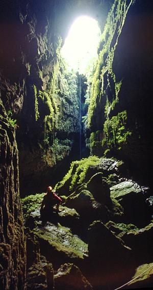 Lost World Höhle, Waitomo