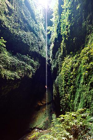 100m Abseilen in die Lost World Höhle, Waitomo