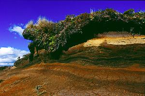 Farbige Erdschichten zeugen von vielen Vulkanausbrüchen, im Tongariro Nationalpark, Neuseeland