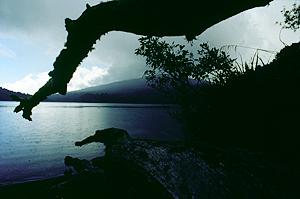 Lake Rotoupounamu, Tongariro Nationalpark, Neuseeland