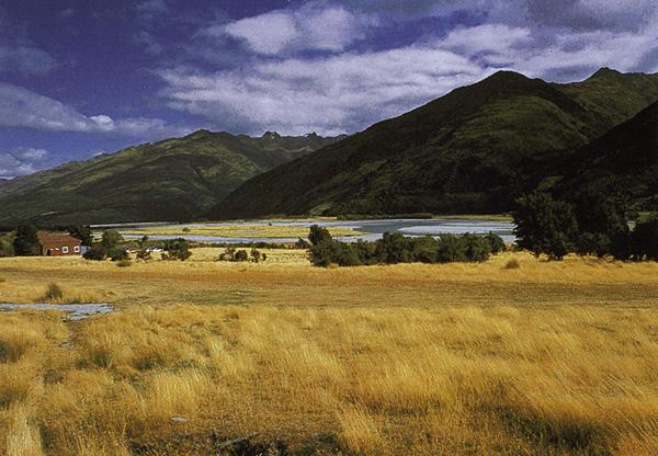 Makaroro am Mt. Aspiring Nationalpark, Alpen, Haast Pass, Südinsel Neuseeland