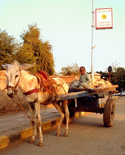 Strassenverkauf von Brot in Luxor, Ägypten