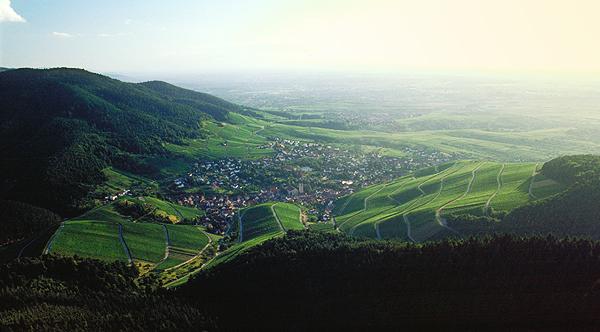 Rebland von Baden-Baden mit >Neuweier von der Yburg, Baden-Württemberg, Deutschland