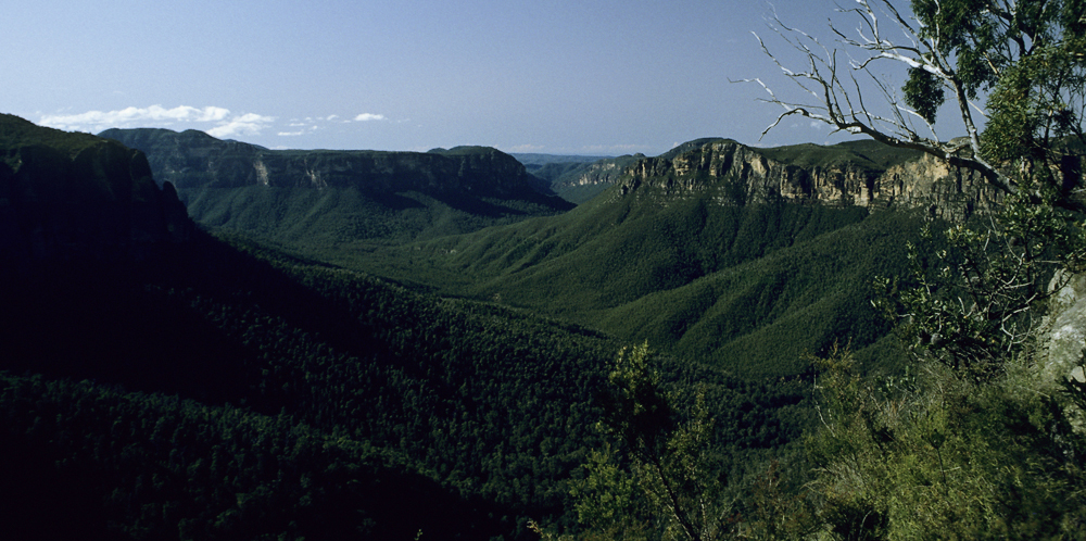 Ausblick vom Pulpit Rock in Govetts Gorge nahe Blackheath in den Blue Mountains, Australien