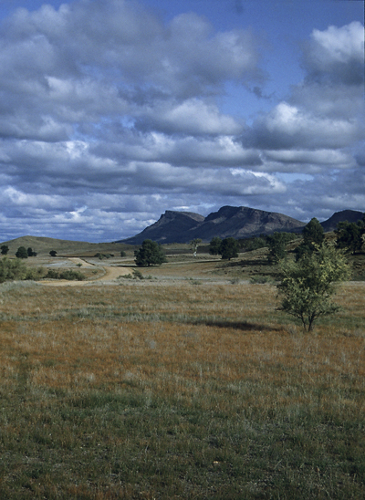 Ausblick auf den äusseren Rand der Schüssel des Wilpena Pound in den Flinders Ranges, Australien