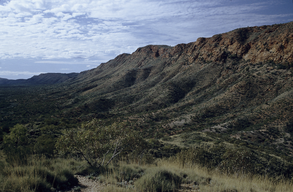 In den Western MacDonnell Ranges im australischen Outback