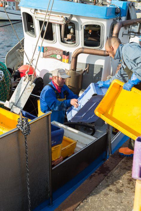 Fischer laden Kisten für den Fischfang auf das Boot im Hafen von Vitte auf Hiddensee