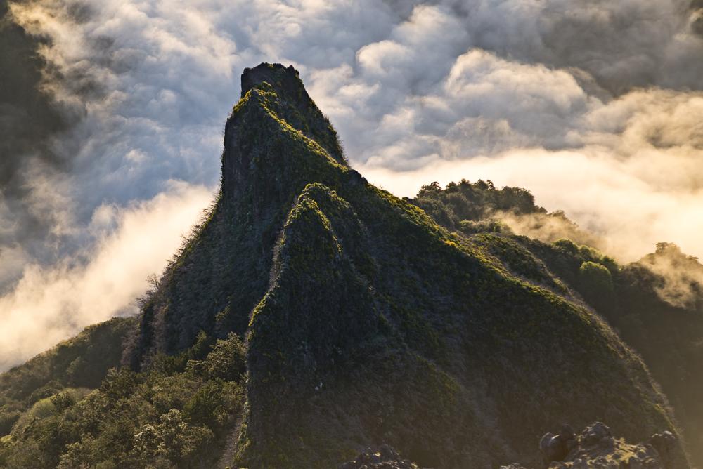 Die Bergwelt von Madeira besteht aus steilen, oft dicht bewachsenen Felswänden, Bergflanken und -kämmen.
