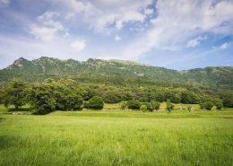 Almwiesen unterhalb der Punta Almana am Iseosee, Lombardei, Italien