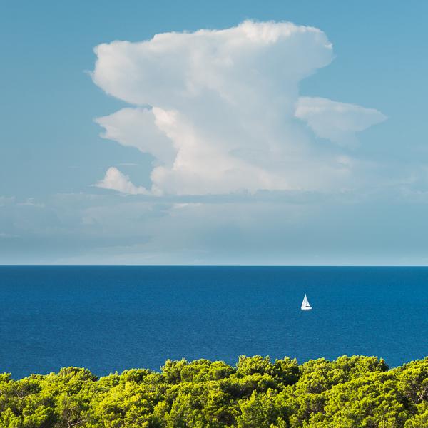 Segelboot auf der Adria hinter dem Küstenwald der Insel Lošinj