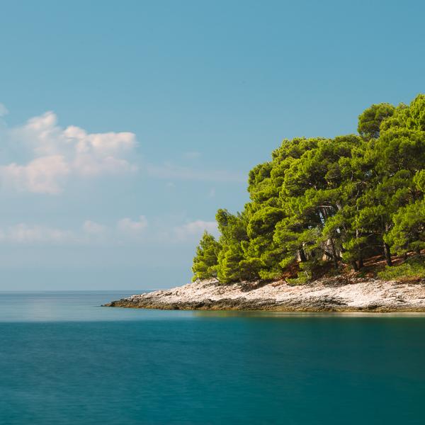 Landzunge mit Felsenküste, Pinienwald und türkisfarbenem Meer an der Krivica-Bucht auf der Insel Lošinj, Kvarner Bucht, Kroatien