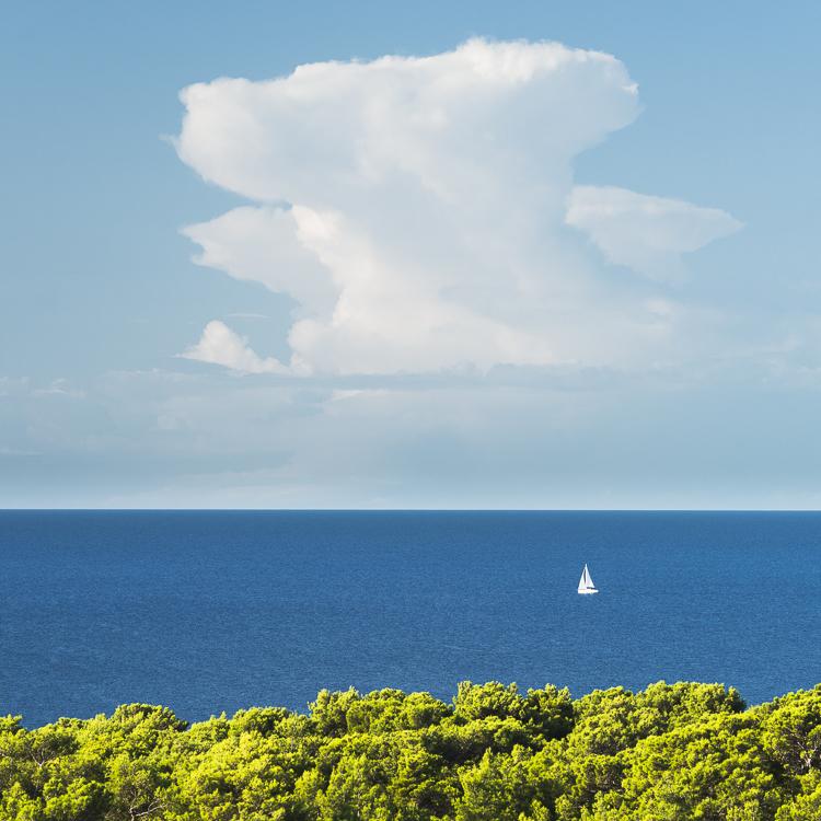 Segelboot auf der Adria hinter dem Küstenwald der Insel Lošinj und dem Horizont mit einer Cumuluswolke am Himmel, Kroatien