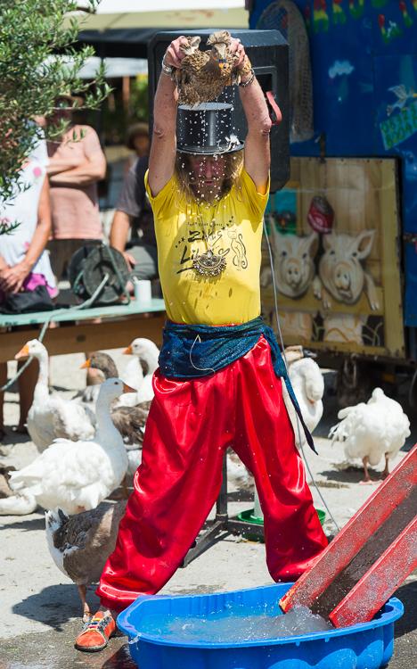 Zirkus Liberta - die wagemutige Ente vor der Rutschpartie ins Bassin