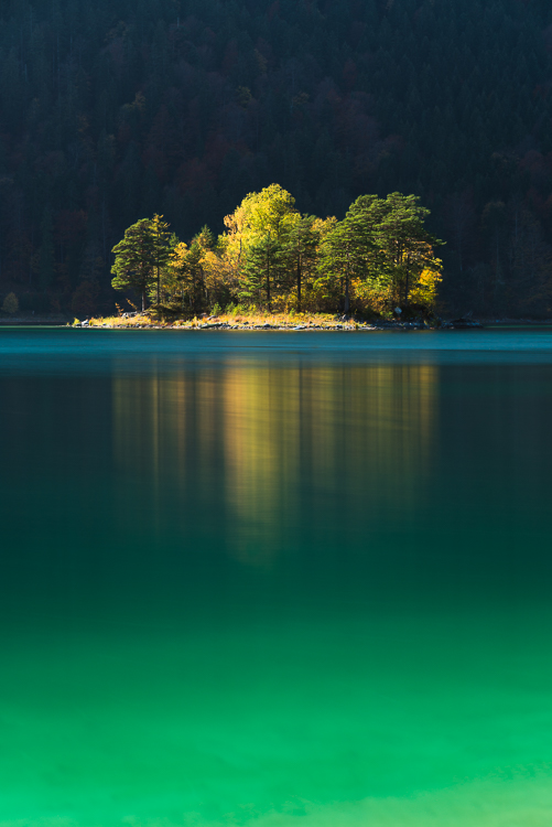 Inseln im Eibsee: Herbstliche Bäume leuchten auf der Ludwigsinsel im türkisfarbenen Wasser des Eibsees vor einem schattigen Bergwald, Bayern, Deutschland