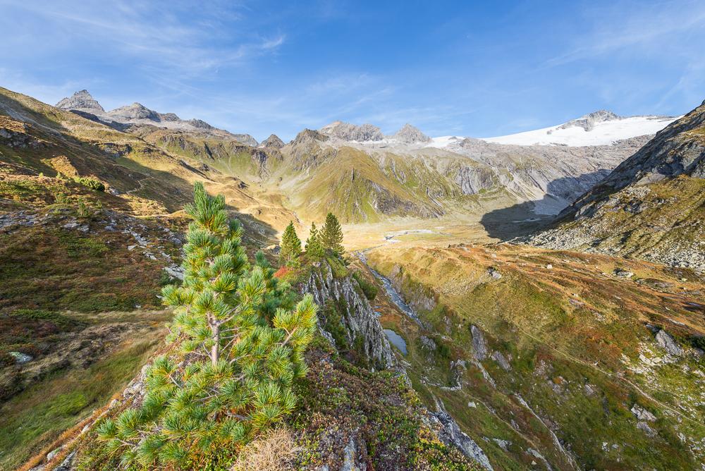 Berge, Gletscher am Berliner Höhenweg zur Mörchenscharte oberhalb der Berliner Hütte in der Abendsonne, Zillertal, Tirol, Österreich