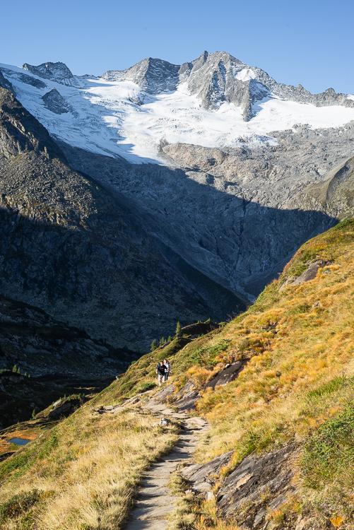 Wanderer auf dem Berliner Höhenweg vor Waxeggkees und Großem Möseler, Zillertal, Tirol, Österreich