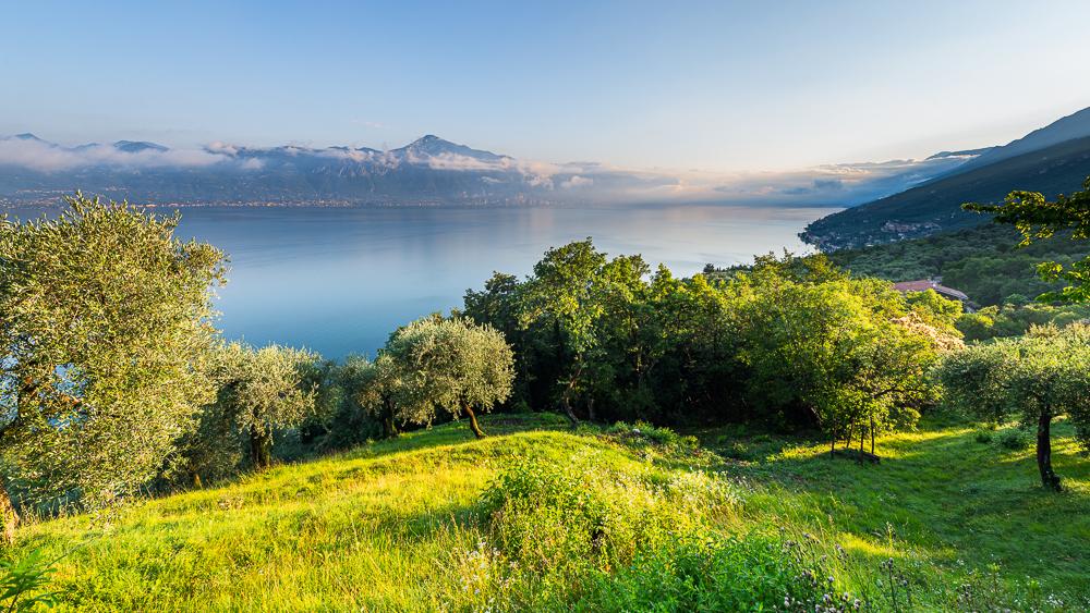 Olivenhaine, Bergwiesen und Dörfer an den Hängen des Monte Baldo und dem nördlichen Gardasee in der Morgensonne, Veneto, Trentino, Italien