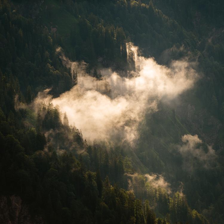 Wolkenfetzen am Bergwald in der Morgensonne, Bayern, Deutschland