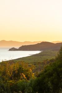 Blick von Castiglione della Pescaia über die Bucht bei Rochette auf das Tyrrhenische Meer und die Insel Elba bei Sonnenuntergang, Maremma, Toskana, Italien