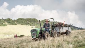 Almbauer auf einem Traktor fährt mit Brennholz über eine Almwiese der Roßalm, Bayern, Deutschland