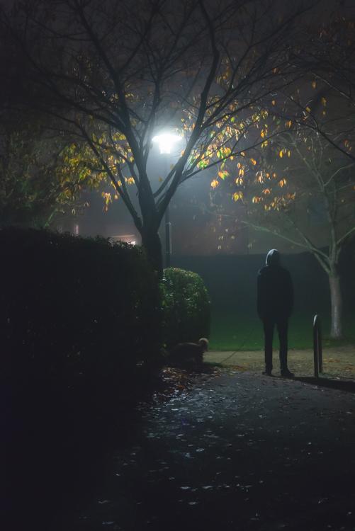 Ein Mann steht mit seinem Hund in einem Park unter einer Laterne an einem nebligen Herbstabend