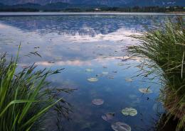 Sonnenaufgang am Ufer des Hopfensees vor den Bergen der Alpen, Allgäu, Bayern, Deutschland